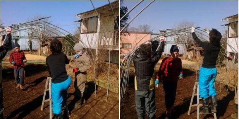 CHIBA-Construyendo-un-invernadero-03